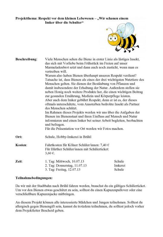 12-Projektthema-Biene